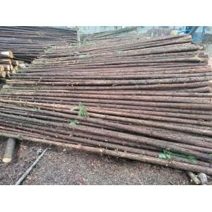 绿化支撑杆1-6米
